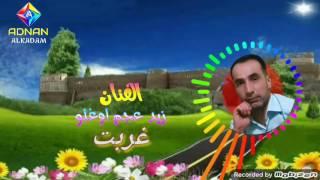 الفنان زيد عجم /غربت 2017