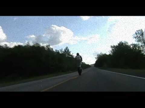 squidbilliez ride wheelies! with music by lenor astray