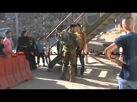 Life under occupation daily harassment