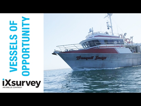 Choosing the Right Vessel // IXSURVEY // Marine Survey Specialists