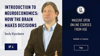 Introduction to Neuroeconomics: Neuroeconomics & Decision-making Theory #4