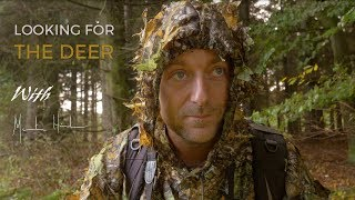 Wildlife photography - Foxes & Deer | Behind the scenes with wildlife photographer Morten Hilmer thumbnail