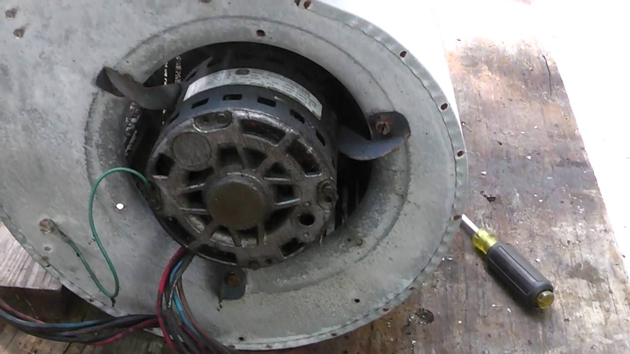 Hvac how to remove a squirrel cage blower fan out of an for Oil for blower motor