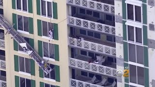 Caught On Camera: Painter Saved After Scaffolding Collapse