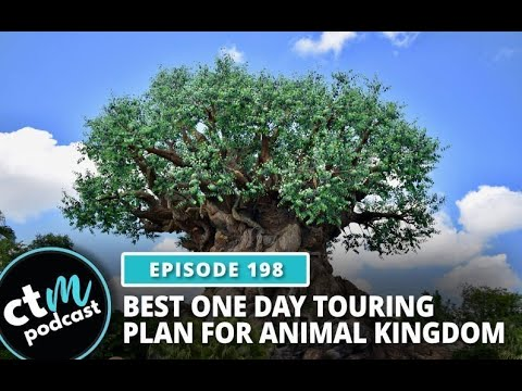 Best One Day Touring Plan For Animal Kingdom | Capture The Magic Podcast - Ep 198