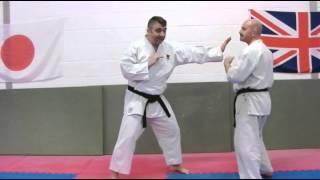 Tekki Sandan Nijushiho tate shuto Bunkai Strategies Newsletter 2013 koryu oyo jutsu