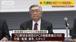 プロ野球開幕前に全球団でPCR検査実施へ(20/06/08)