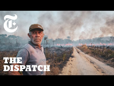 Meet the Ranchers Who Claim the Brazilian Amazon is Theirs to Burn | The Dispatch