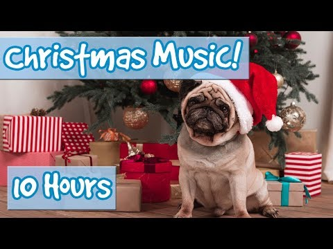 Christmas Music to Relax Dogs! Classic Away in a Manger, Jingle Bells, Deck the Halls, Feliz Navidad