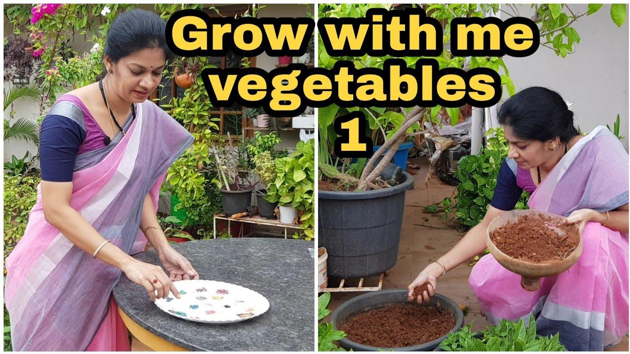 #growwithme Vegetables-1/ beginners guide to grow different vegetables/నాతోపాటు పెంచండి #madgardener
