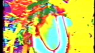 Evil Acid Baron Show