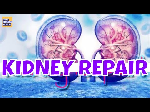 Repair YOUR Kidney NATURALLY with JUST One Ingredient! IMPROVE KIDNEYS FUNCTION With NATURAL CURES