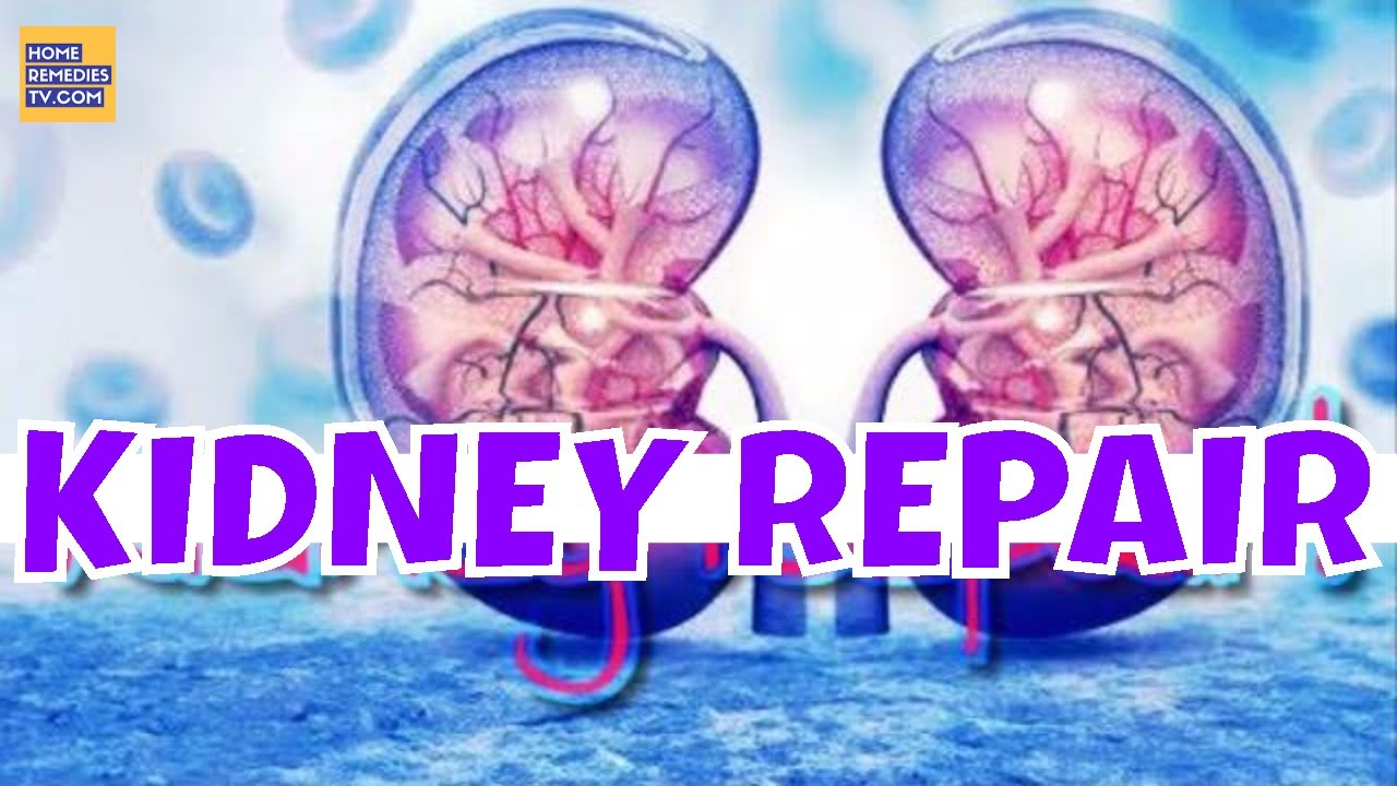 Repair Your Kidney Naturally With Just One Ingredient Improve