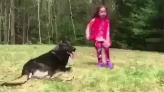Супер Профессиональная защита от собаки. Телохранители Учитесь !!!