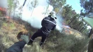 feu de forêt 2011