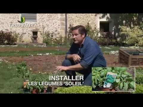 Potager 2016 avril doovi for Conseil du jardinier
