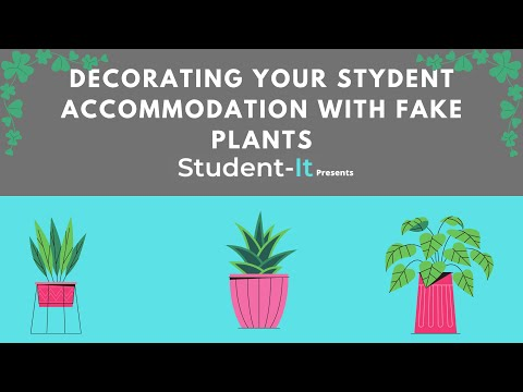 Decorating Your Student Accommodation: Using Fake Plants