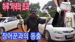 장어 꾼들과의 동출 Team eel fishing [ 초짜낚시 ]