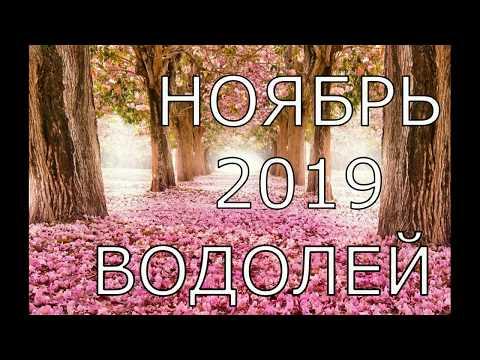 ВОДОЛЕЙ. ТАРО ПРОГНОЗ НОЯБРЬ 2019