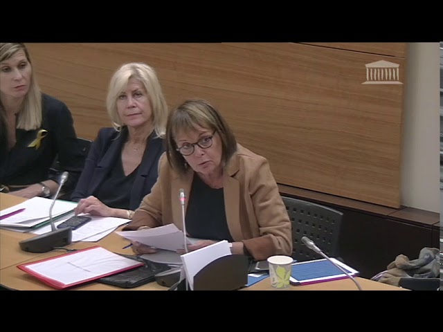 Intervention lors de l'audition du ministre de l'éducation relative à la situation des élèves