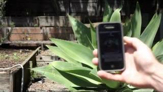 iphone Pocket Light Meter - Free App