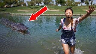 #monster in pond