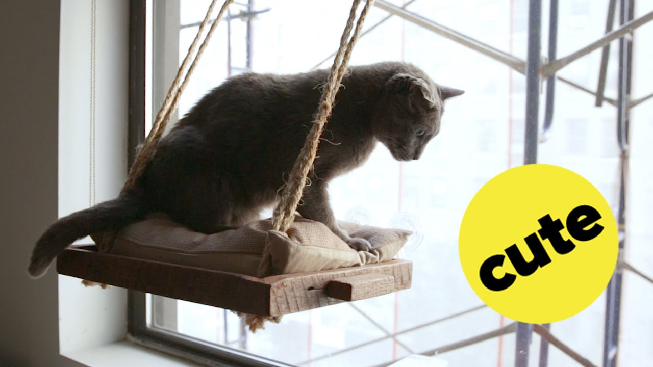 Diy Cat Window Perch Youtube