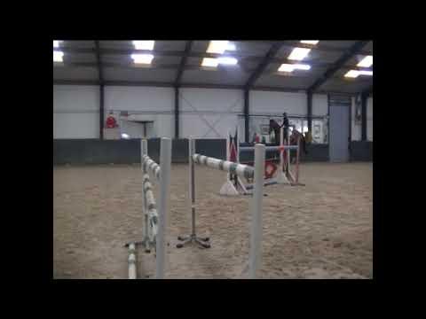 6yo Hannoverian chestnut gelding jumping a few fences