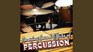 Bongo Drums: Latin Rhythm