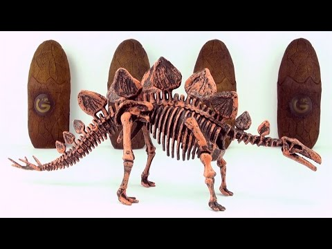 Dinosaur surprise Eggs Skeleton fossils Stegosaurus and Tyrannosaurus Part 1