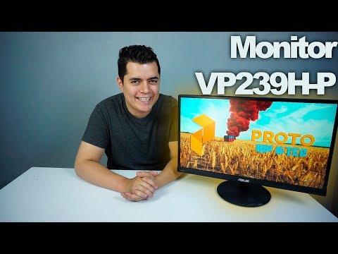 Un monitor muy versátil para diseño y gaming de bajo costo | VP239H-P - Proto Hw & Tec