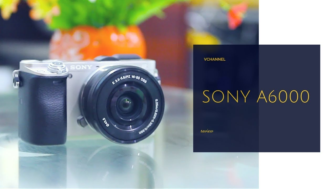 ✅ Đánh giá và hướng dẫn sử dụng chi tiết nhất máy ảnh mirrorless Sony A6000