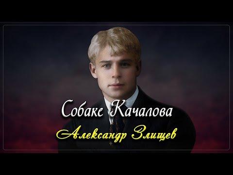 Собаке Качалова - Сергей Есенин