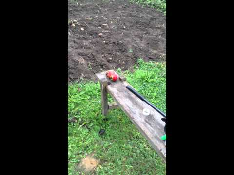 Hatsan 125 выстрел в две помидоры экспансивной пулей