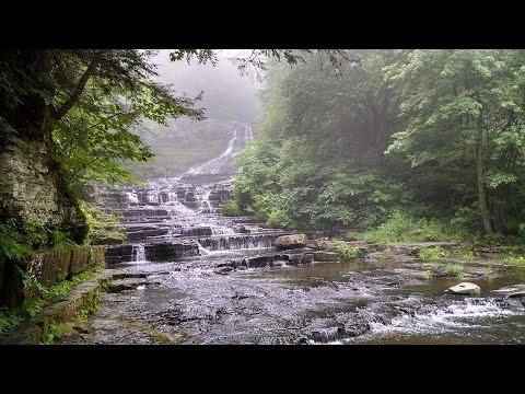 Exploring the Huyck Preserve | Hiking Albany County Catskills | Rensselaerville, NY