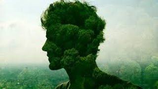 Экология и нравственность(Экологическая катастрофа В одной из публикаций в журнале «Знание – сила», содержащей размышления о причин..., 2015-05-07T08:47:25.000Z)