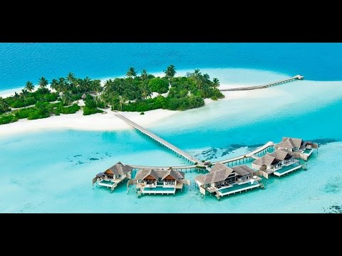 NIYAMA Luxury Resort by Per AQUUM l Maldives Luxury Resorts and Hotels