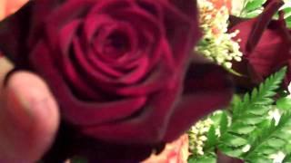 Black Baccara Roses and Orange Roses Sale 2 Dollars A Rose from The Gardens Of Venus Florist Saturday October 23 2010