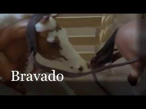 Breyer Music Video  Bravado