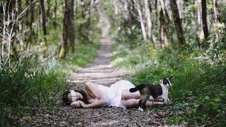 Смешные картинки про кошек и котят Выпуск №42  FUNNY CATS СМЕШНЫЕ КОШКИ