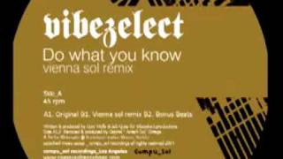 VIBEZELECT - DO WHAT YOU KNOW (VIENNA SOL REMIX)