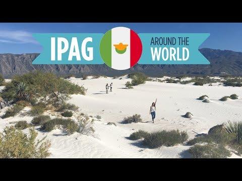 Expat'IPAG 🇲🇽 Mexico, Monterrey: Ines, Ines, Florian & Ferdinand / Monterrey TEC University