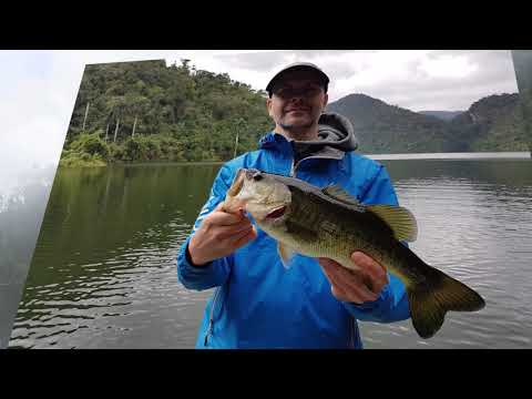 GLoomis.lt / Bass Fishing In Cuba