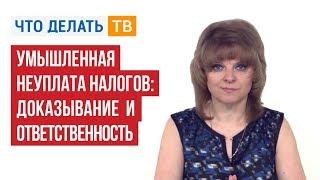 видео УК РФ - Статья 199. Уклонение от уплаты налогов и (или) сборов с организации