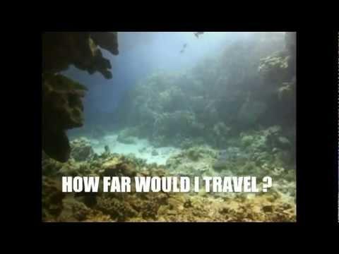 HOW DEEP IS THE OCEAN  VERSION KARAOKE