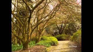 Mount Congreve Gardens, Waterford, Spring 2014.