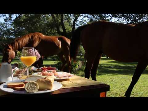 Horseback riding in Sardinia