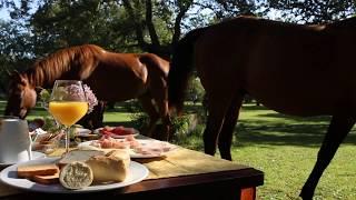 Horseback in Sardinia, Italy