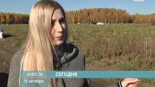 ТНТ-Поиск Анонс выпуска