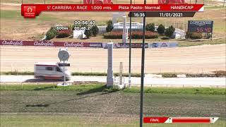 Vidéo de la course PMU PREMIO CAMALEON